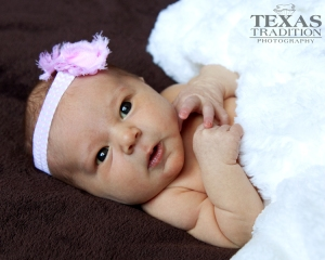 dallas newborn portraits_0121