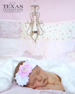 dallas newborn portraits_0155
